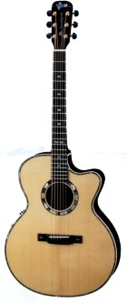 VSP-Don Electric Acoustic Guitar