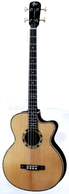VSPB-Bob Electric Acoustic Bass